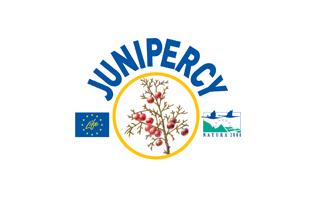 junipercy