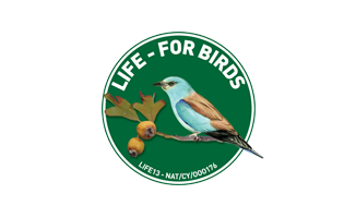 life-for-birds