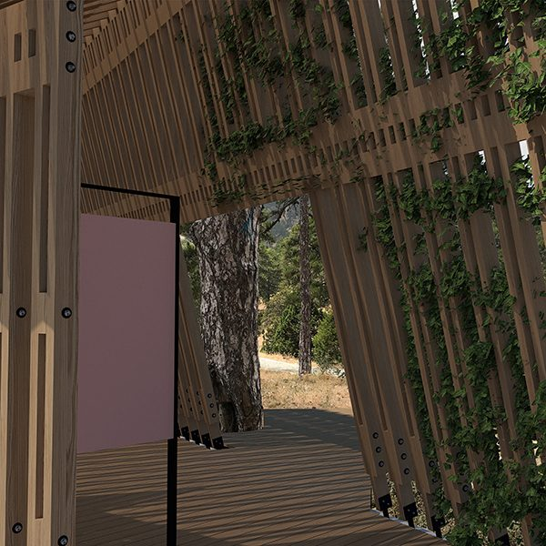 Νέες υποδομές σύντομα στο Εθνικό Δασικό Πάρκο Τροόδους