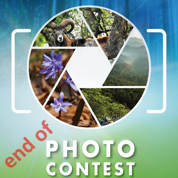 End of Photo Contest